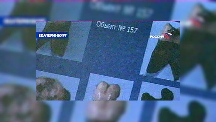 Экспертиза: найденные останки могут принадлежать детям Николая II