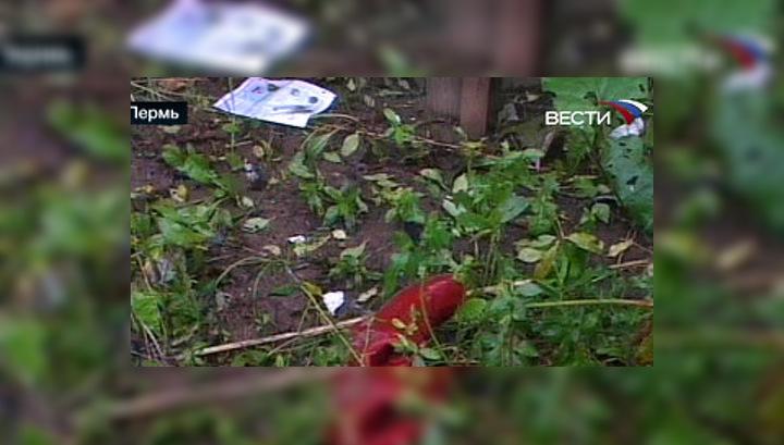 В Пермском крае разбился Boeing 737, следовавший из Москвы в Пермь
