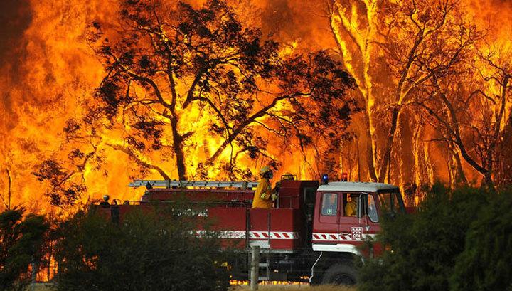 В Австралии растет число жертв пожаров