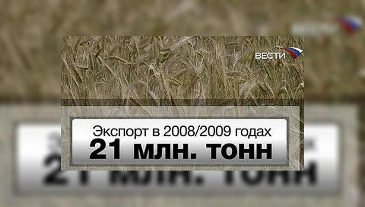 Итоги Всемирного зернового форума: у России амбициозные планы