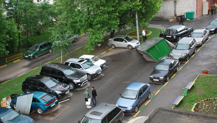 Ураган в Москве повалил более тысячи деревьев