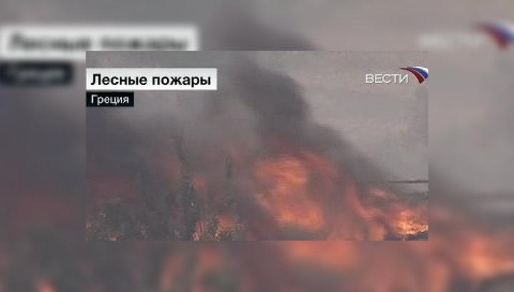 Российские летчики помогут грекам тушить пожар у Афин