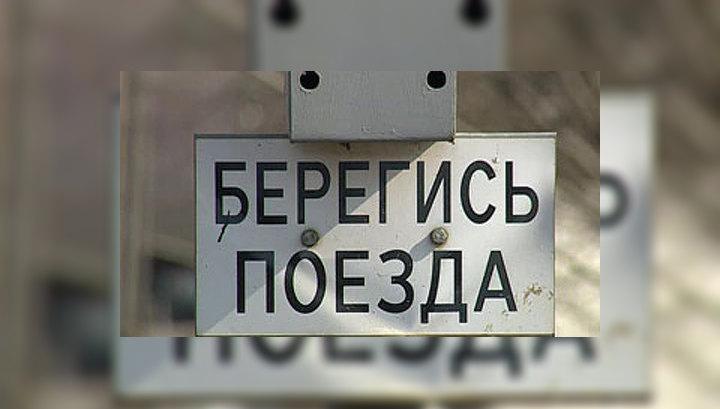 """Жители поселков на трассе Москва-Петербург не могут ужиться с """"Сапсаном"""""""