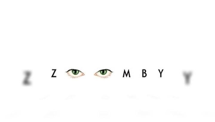 Вести.net: миссия видеопортала Zoomby.ru – борьба с пиратством