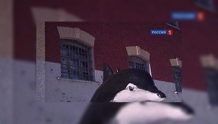 """Евсюков присоединился к маньякам и людоедам из """"Чёрного дельфина"""""""
