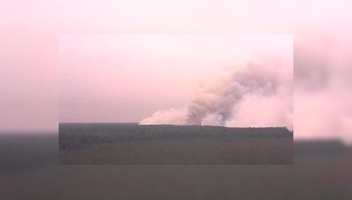 Видеокамера на страже лесов от огня