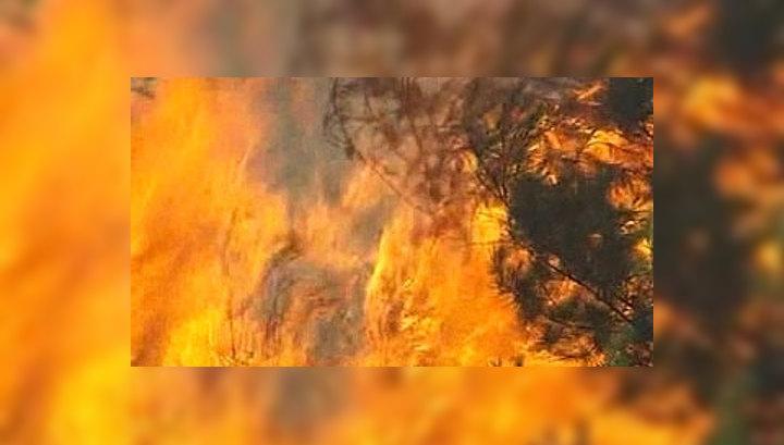 Пожары наступают на столицу Греции