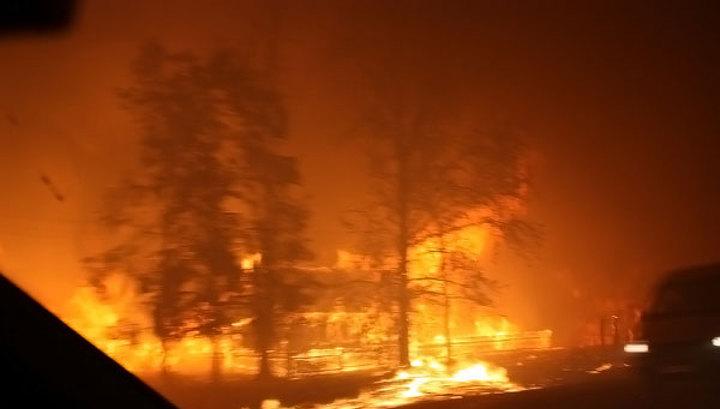 Россия в огне: стихийные пожары уничтожают целые деревни