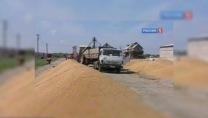 В России вступает в силу запрет на экспорт зерна