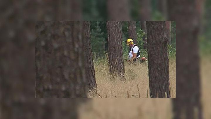 От лесных пожаров немцев спасают фотокамеры