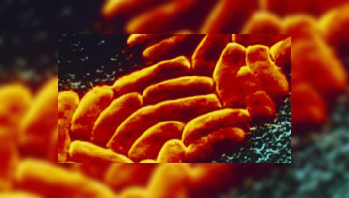 Ученые обнаружили новые смертоносные бактерии
