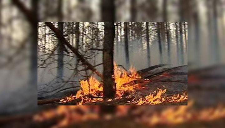 Леса Сибири продолжают гореть