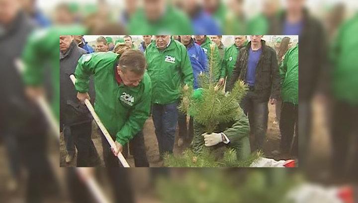 День посадки леса станет общероссийской традицией