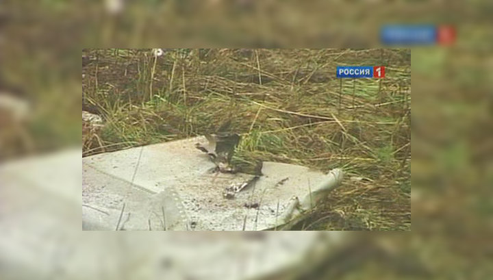 Обнаружен речевой самописец разбившегося под Пермью МиГ-31