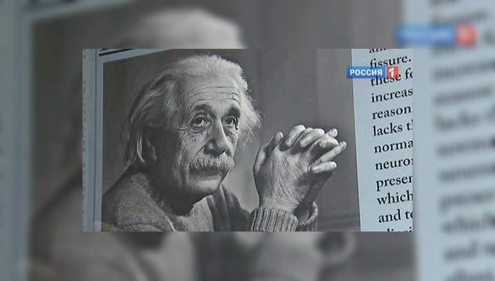 Нестареющий гений: мозг Эйнштейна показали широкой публике