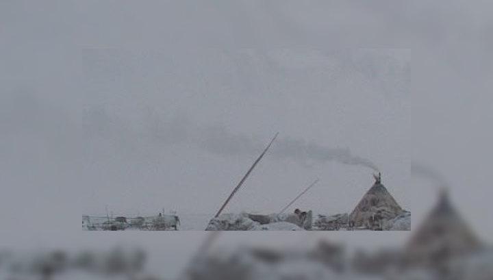 Воротами для освоения Арктики станет Ямал