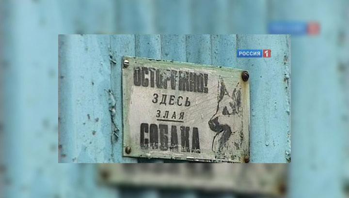 В Новочеркасске голодные овчарки растерзали семилетнего мальчика