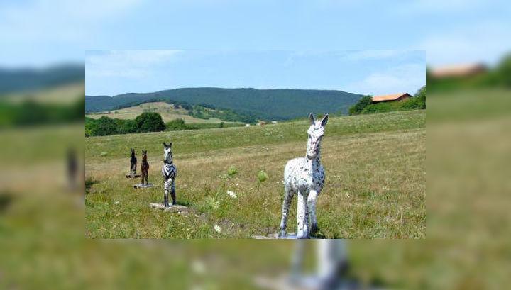 Учёные раскрасили манекены лошадей в разные цвета и выставили их на венгерской лошадиной ферме (фото Gábor Horváth).