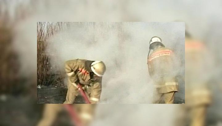 В Забайкалье за сутки зарегистрирован 81 лесной пожар