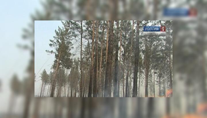 В Могочинском районе за сутки отмечено 5 крупных лесных пожаров