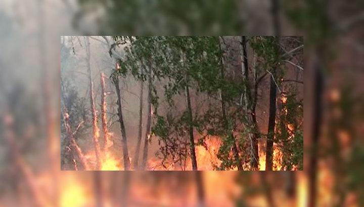 Пожары в Сибири не утихают