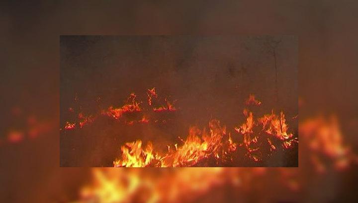 На Дальнем Востоке тайга горит только в Якутии