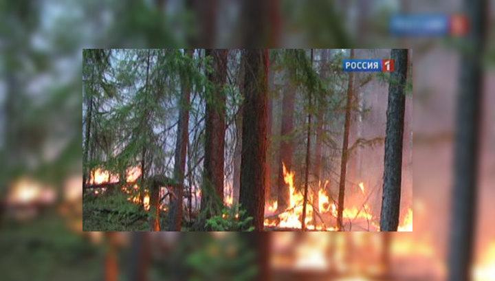 Огненная Сибирь: дыма меньше, но площадь растет