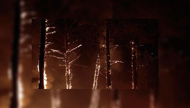 В Сибири и на Дальнем Востоке растет площадь лесных пожаров