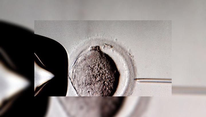 блог, добавил в сперме трусики фото нужная фраза