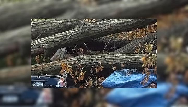 """Число жертв урагана """"Сэнди"""" возросло до 111 человек"""