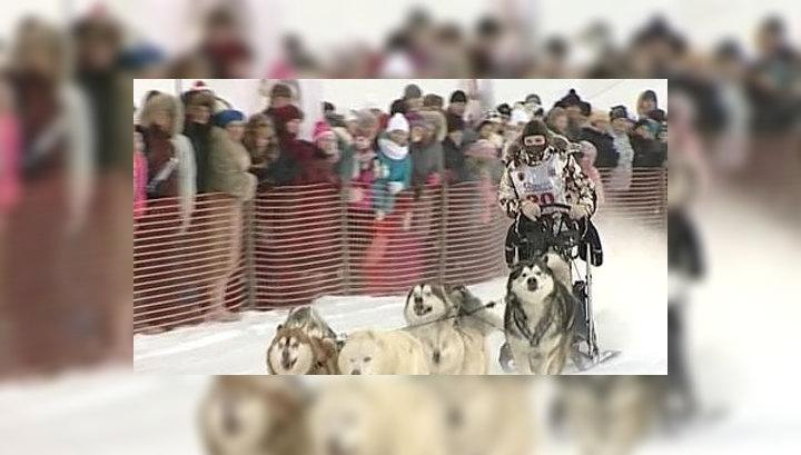Международная гонка на собачьих упряжках подходит к концу