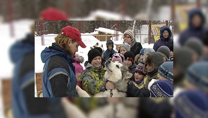 Карельские ездовые готовятся покорить Гренландию