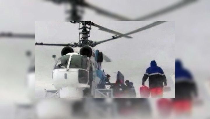 Вести с Молодежной: в Антарктиде внутри камней найдена жизнь