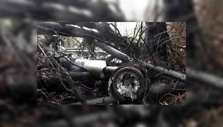 Обломки Ан-2 пролежали год под носом у поисковиков