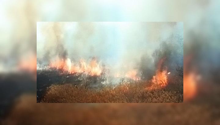 Площадь лесных пожаров на Дальнем Востоке и в Забайкалье растет