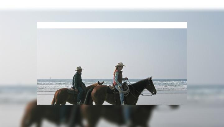 Между лошадью и её постоянным всадником часто развивается тесная связь