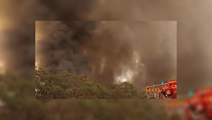 Сильнейший лесной пожар может уничтожить Сидней