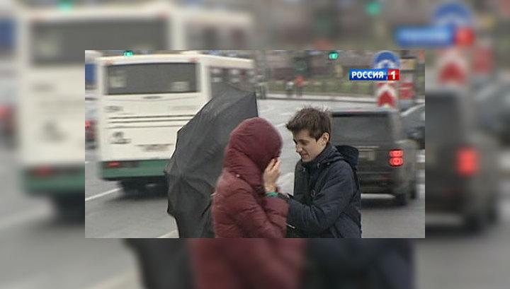 """Последствия """"Святого Иуды"""": в Ленинградской области без света остаются 124 поселка"""