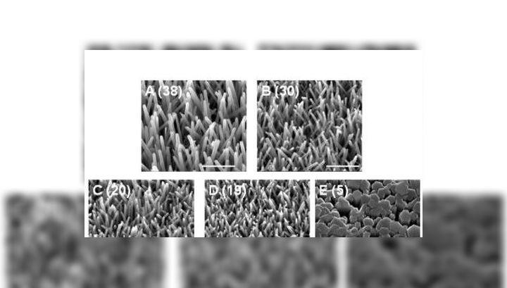 Нанотрубки оксида цинка, использованные для изготовления гибридных солнечных батарей