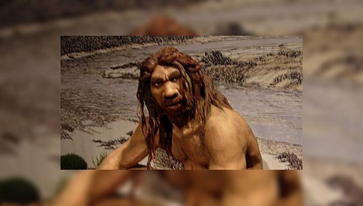 Древние копья, скорее всего, были изготовлены не представителями вида Homo sapiens, а гейдельбергским человеком