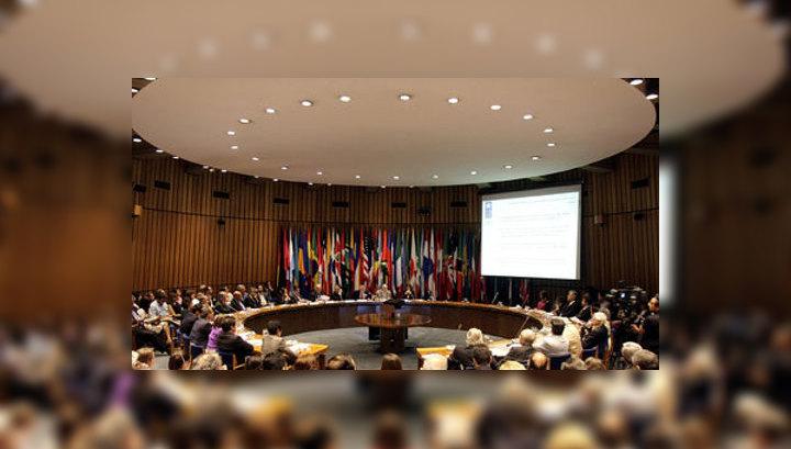 Совбез ООН начал заседание в связи с катастрофой в небе Украины