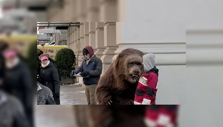 Видео медведь стриптиз