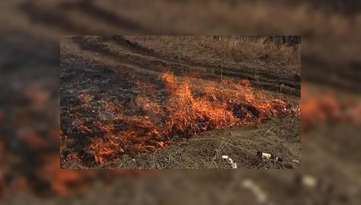 В Красноярском крае начались лесные пожары