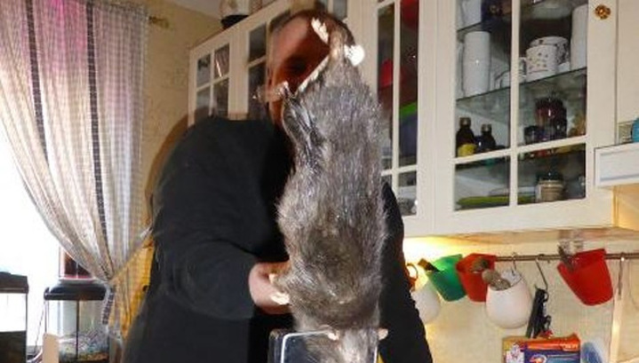 рассказ как спасли крысу