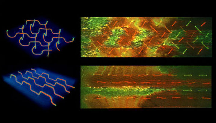 Рентгеновская микротомография (a) показывает микроканалы в материале (ёлочкой и параллельно). Флюоресценция (b) демонстрирует смолу (красный цвет), отвердитель (зелёный) и область их смешивания при возникновении внутреннего повреждения (жёлто-оранжевые)