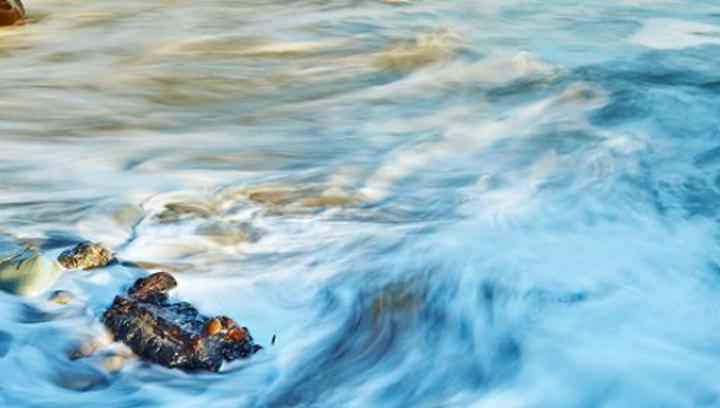 Обмен веществ зародился около 4 миллиардов лет назад в архейском океане
