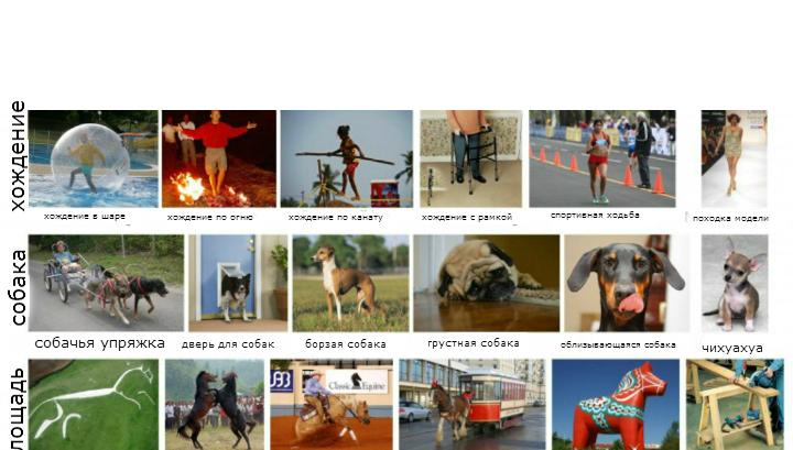 Программа LEVAN учится, связывая слова с изображениями