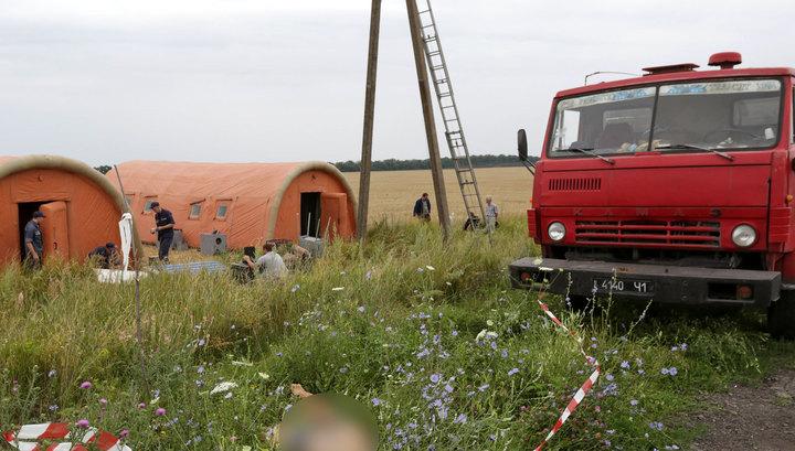 Europol и Interpol вместе будут опознавать жертв авиакатастрофы под Донецком