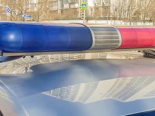 Под Петербургом пьяный мужчина насмерть задавил 75-летнюю мать