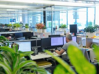 Майские выходные: как будет работать бизнес